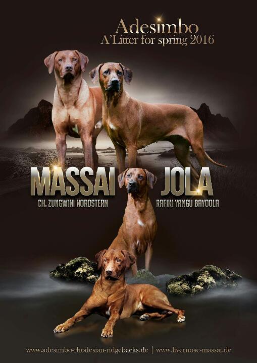 Hochzeitsposter Jola & Massai